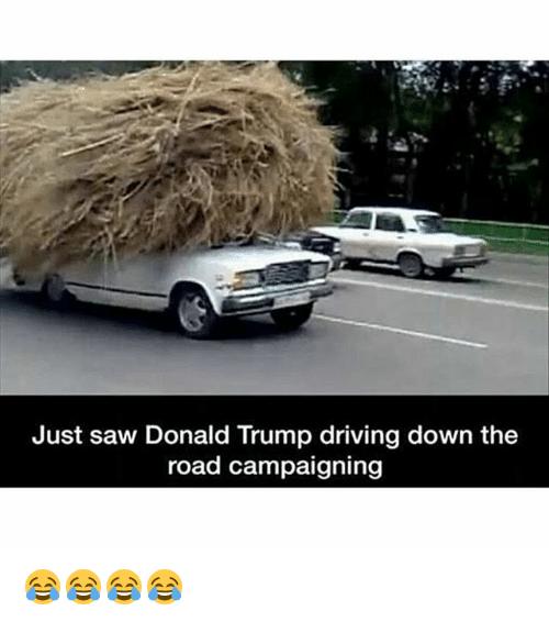 trump-campaign.png